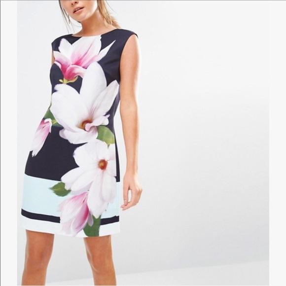 Ted baker dresses nwot magnolia stripe dalyn shift dress poshmark nwot ted baker magnolia stripe dalyn shift dress mightylinksfo